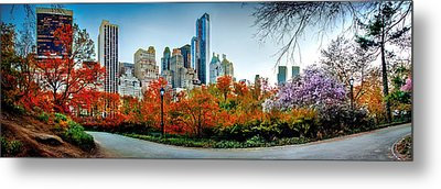 Changing Of The Seasons Metal Print by Az Jackson
