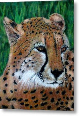 Cheetah Metal Print by Carol McCarty