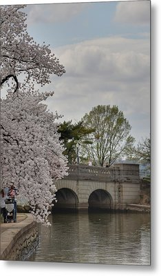 Cherry Blossoms - Washington Dc - 011328 Metal Print by DC Photographer