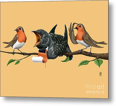 Cock Robin Colour Metal Print by Rob Snow