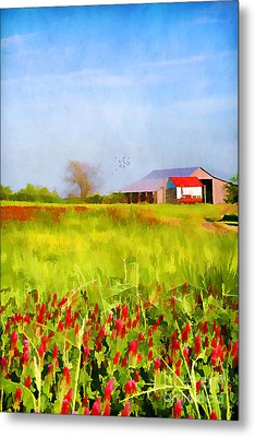 Country Kind Of Spring Metal Print by Darren Fisher