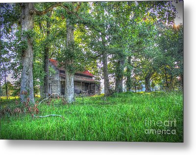 Country Quiet Metal Print by Dan Stone