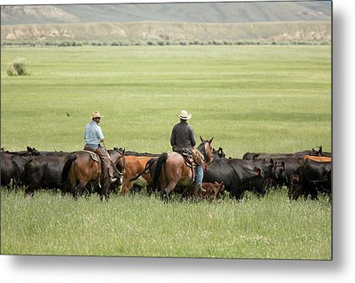 Cowboys Herding On A Cattle Ranch Metal Print by Jim West