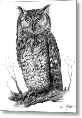 Eagle Owl Metal Print by Dale Jackson
