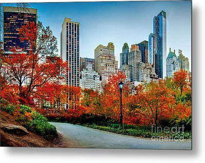 Fall In Central Park Metal Print by Az Jackson