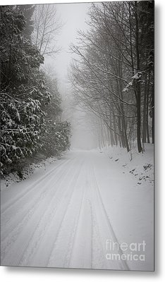 Foggy Winter Road Metal Print by Elena Elisseeva