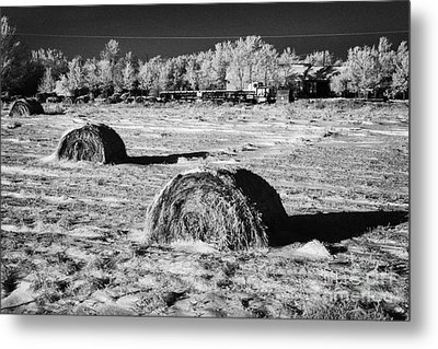 frozen snow covered hay bales in a field Forget Saskatchewan Canada Metal Print by Joe Fox