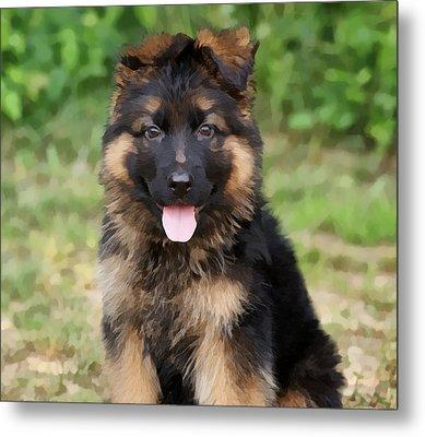German Shepherd Puppy Metal Print by Sandy Keeton