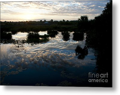 Green Cay Wetlands, Fl Metal Print by Mark Newman