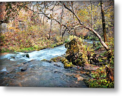 Greer Spring  Metal Print by Marty Koch