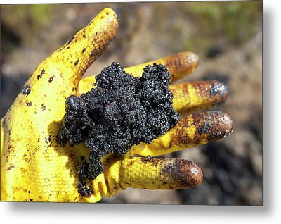 Hand Full Of Tar Sand Metal Print by Ashley Cooper