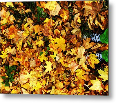 Harmony Metal Print by Lucy D