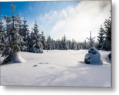 Harz Witches' Trail Metal Print by Andreas Levi