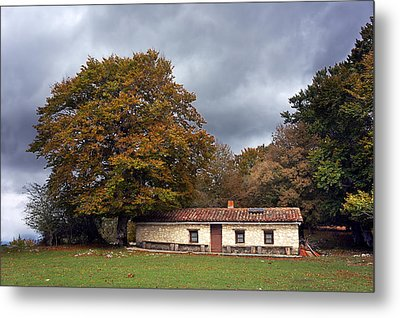 House In Autumn Forest Metal Print by Mikel Martinez de Osaba