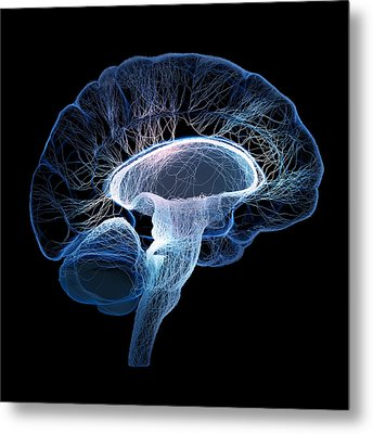 Human Brain Complexity Metal Print by Johan Swanepoel