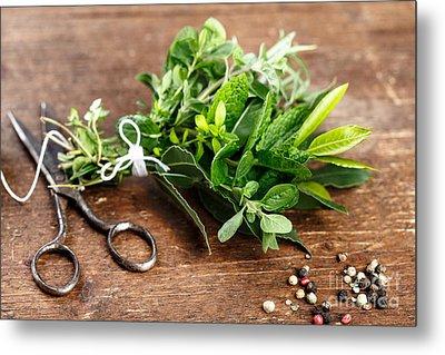 Kitchen Herbs Metal Print by Nailia Schwarz