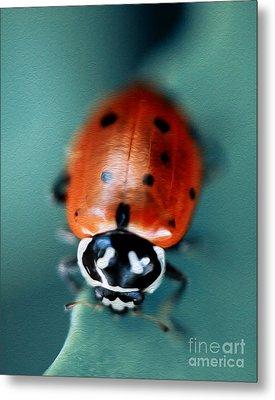 Ladybug On Green Leaf Metal Print by Iris Richardson