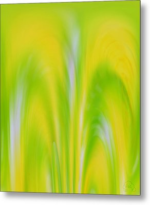 Lemon Lime Metal Print by Patricia Kay
