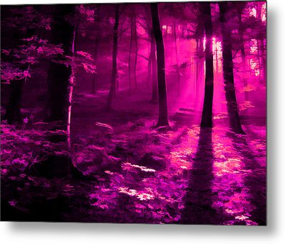 Life 3 Metal Print by Robin Curtiss