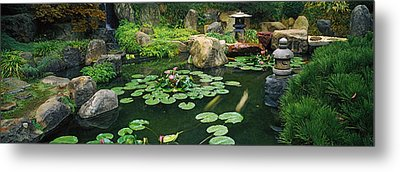 Lilies In A Pond At Japanese Garden Metal Print by Panoramic Images