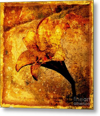 Lily Metal Print by Bernard Jaubert