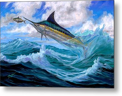 Marlin Low-flying Metal Print by Terry  Fox