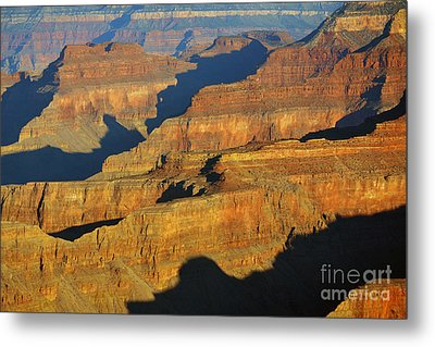 Morning Color And Shadow Play In Grand Canyon National Park Metal Print by Shawn O'Brien
