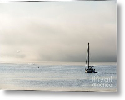 Morning Mist Metal Print by Mike  Dawson
