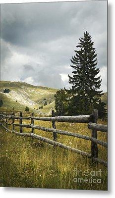 Mountain Landscape Metal Print by Jelena Jovanovic