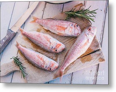 Mullet Fish And Rosemary  Metal Print by Viktor Pravdica