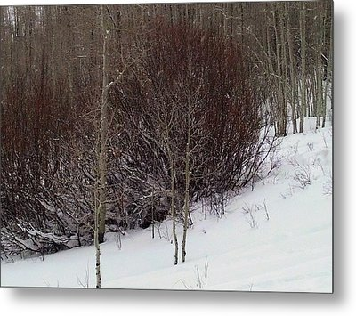 Old Powderhorn Metal Print by Anne Back