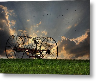 Out To Pasture Metal Print by Lori Deiter