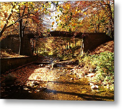 Peace Metal Print by Lucy D