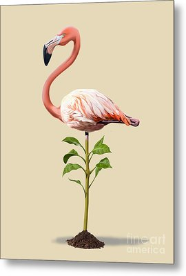 Planted Colour Metal Print by Rob Snow