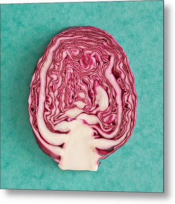 Red Cabbage Metal Print by Tom Gowanlock