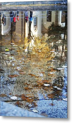 Reflections Metal Print by Lucy D