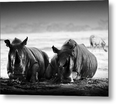 Resting In The Rain Metal Print by Mike Gaudaur