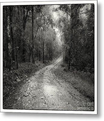 Road Way In Deep Forest Metal Print by Setsiri Silapasuwanchai