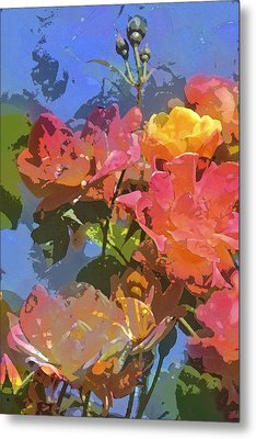 Rose 208 Metal Print by Pamela Cooper