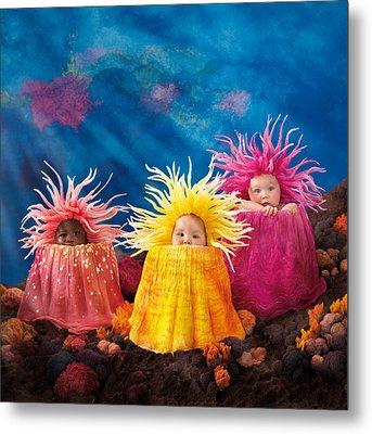 Sea Anemones Metal Print by Anne Geddes