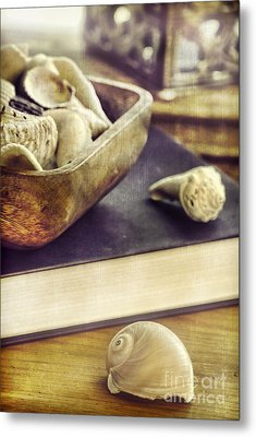 Seashells Metal Print by HD Connelly
