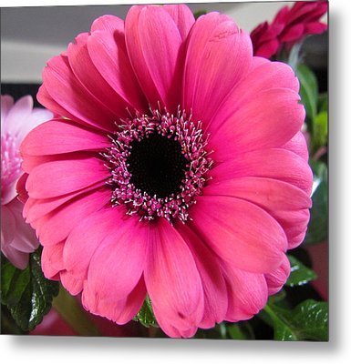 Spring Flower Metal Print by Joyce Woodhouse
