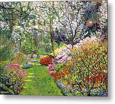 Spring Forest Vision Metal Print by David Lloyd Glover