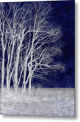 Spring Frost Metal Print by Luke Moore