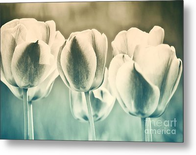Spring Inspiration Metal Print by Angela Doelling AD DESIGN Photo and PhotoArt