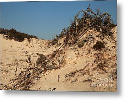 St Joseph Sand Dunes Metal Print by Adam Jewell