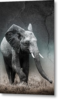 Stone Texture Elephant Metal Print by Mike Gaudaur