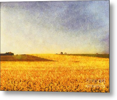 Summer Field Metal Print by Pixel Chimp