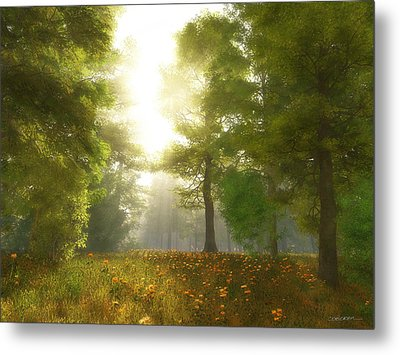 Sunlit Meadow Metal Print by Cynthia Decker