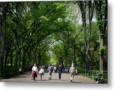 The Mall Central Park Metal Print by Amy Cicconi